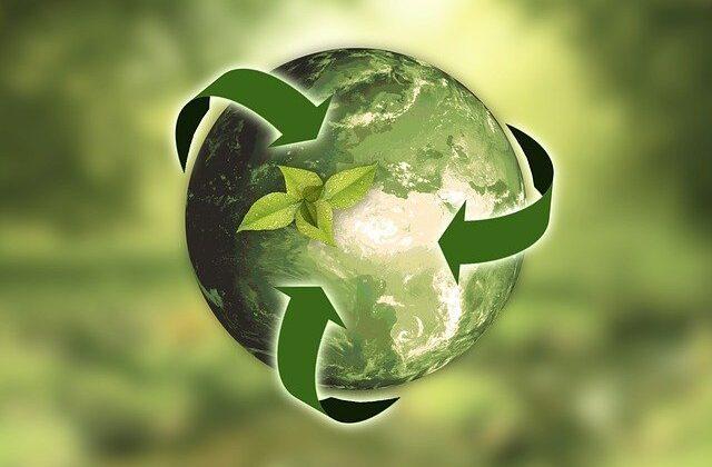 El reciclaje y los niños: ¿cómo enseñarles a reciclar?